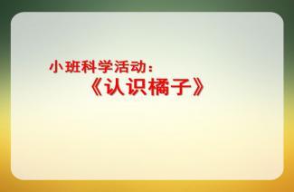 黄豆爷爷过生日ppt_幼儿园小班科学《蔬菜奶奶过生日》PPT课件教案下载 - 快思幼教网